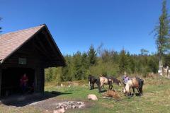 Langmartskopfhütte